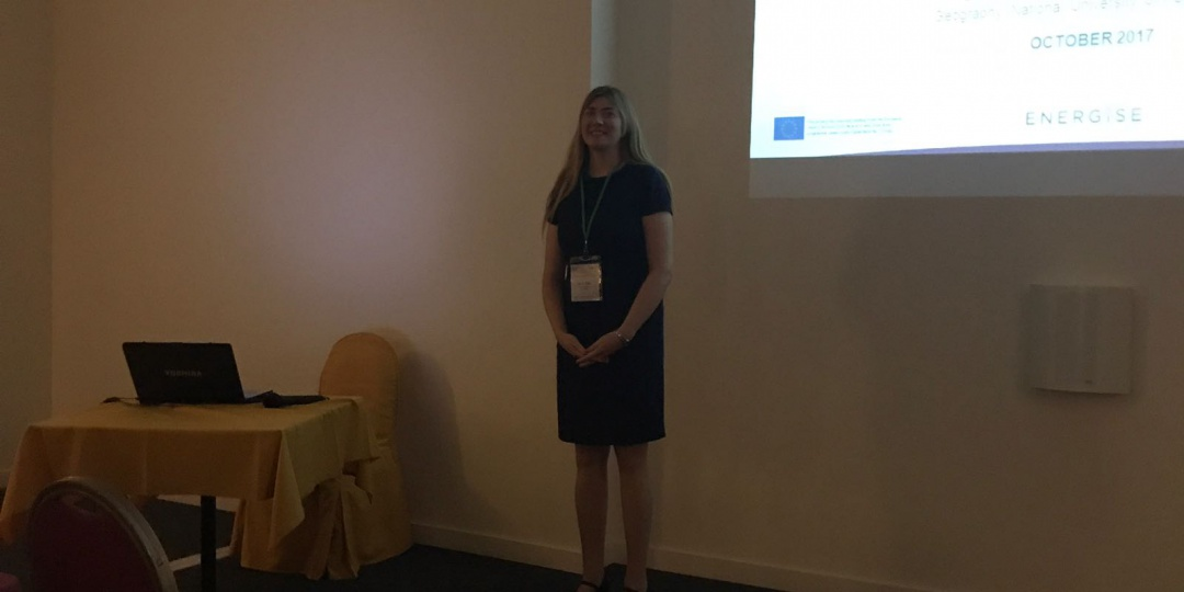 ENERGISE presented at the European Roundtable of Sustainable Consumption and production